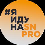 sn_pro_blog.png